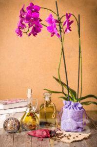 Decorativ bag as flower a pot!