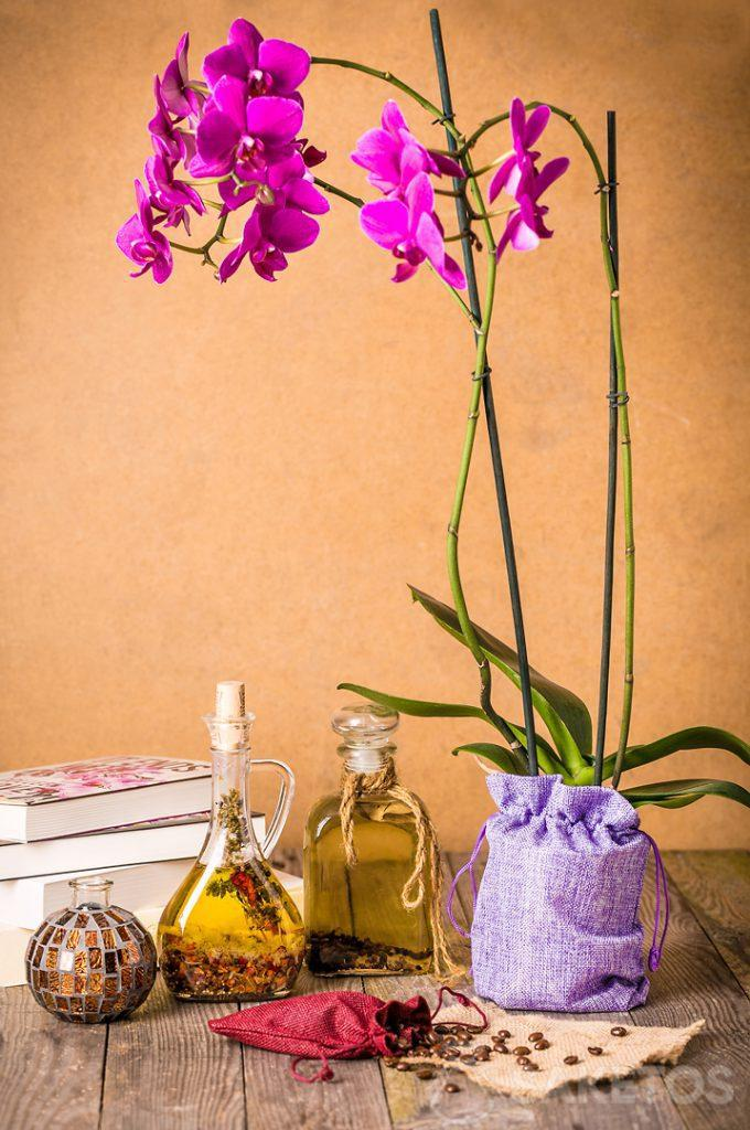 Orchid packaged in a decorative jute bag